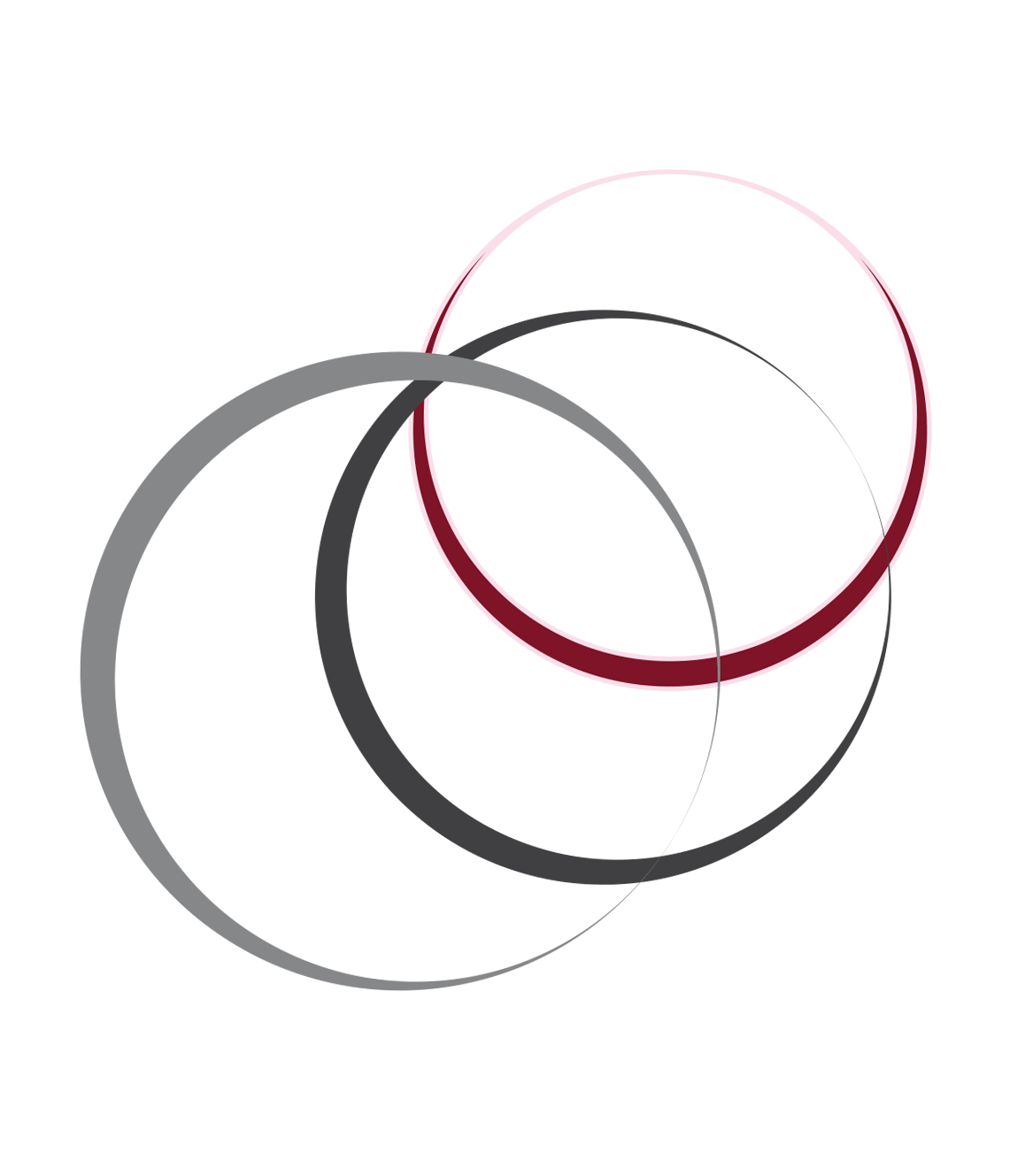 Systeme in Balance Kinesiologie München